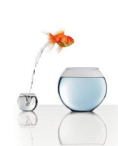 take-a-leap-image